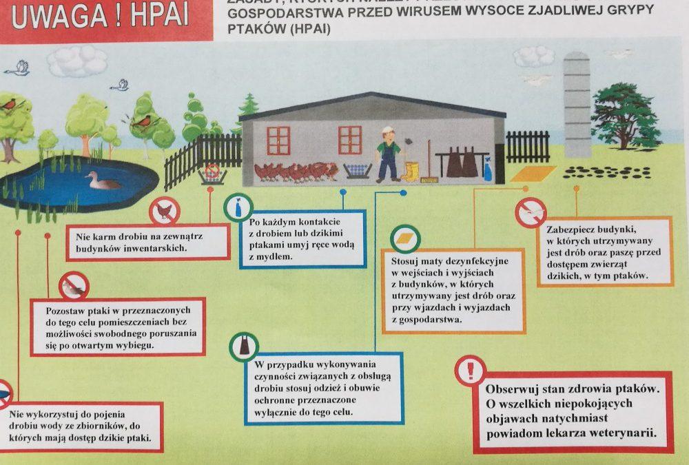 Miniaturka artykułu Zawiadomienie Powiatowego Lekarza Weterynarii w Lubartowie o wystąpieniu ognisk wysoce zjadliwej grypy ptaków HPAI